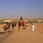 Dubai  Maha-Camel-Ride